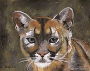 Bobcats Painting Originals - Mountain Cat by Jamie Frier
