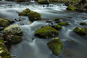 Stokes State Forest Prints - Mountain Creek Print by Rick Berk