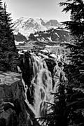Mt Rainier Stream Framed Prints - Mountain Falls Framed Print by David Stine