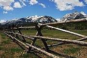 Fences Prints - Mountain Fences Print by Mel Steinhauer