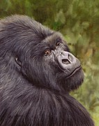 Gorilla Framed Prints - Mountain Gorilla Painting Framed Print by David Stribbling