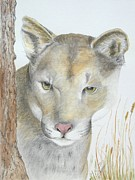 Artist Watercolor Prints - Mountain Hunter Print by Joette Snyder