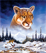 Cats Photo Metal Prints - Mountain Lion Metal Print by MGL Studio - Chris Hiett