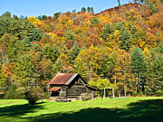 Susan Leggett Posters - Mountain Log Home in Autumn Poster by Susan Leggett