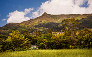 Mauritius Photos - Mountain Mauritian Landscape by Jenny Rainbow