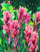Indian Paintbrush Prints - Mountain Meadows Paintbrush Print by Barbara Jewell