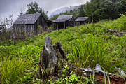Old Cabins Prints - Mountain Mists at Le Conte Print by Debra and Dave Vanderlaan