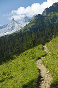 European Alps Framed Prints - Mountain Path Framed Print by Chevy Fleet