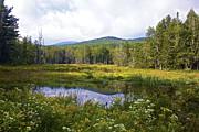 Amazing Jules - Mountain Reflection