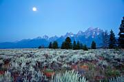 Randall Branham - Mountain Sage and Moon