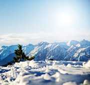 Daylight Art - Mountain snowy winter scenery by Michal Bednarek