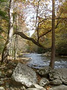 Gatlinburg Tennessee Prints - Mountain Stream 2 Print by Steven Overton