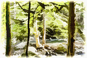 Barry Jones - Mountain Stream
