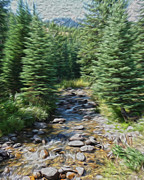 Brook Photos - Mountain Stream by Heather MacKenzie