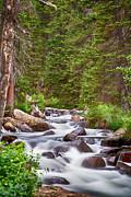 James BO  Insogna - Mountain Stream