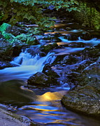 Painted Rocks Art - Mountain Stream by Robert Harmon