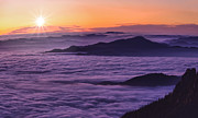 Carpathians Originals - Mountain Sunset Above Clouds by Ioan Panaite