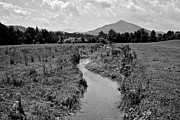 Distant Mountains Prints - Mountain Valley Stream Print by Robert Harmon