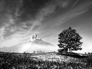 Fog Prints - Mountain Zir Print by Davorin Mance