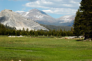 Vacation Photos - Mountains Meadows of Yosemite by LeeAnn McLaneGoetz McLaneGoetzStudioLLCcom