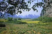 Rudi Prott Framed Prints - mountains Near Yangshou and Guilin  Framed Print by Rudi Prott