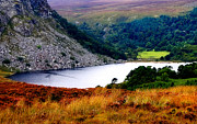 Lush Vegetation Posters - Mountainy Sapphire. Lough Tay. Ireland Poster by Jenny Rainbow