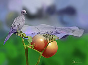 Tomatoes Mixed Media Prints - Mourning Dove Print by EricaMaxine  Price