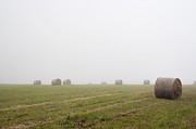 Haying Photos - Mowed Meadow In The Mist by Michal Boubin