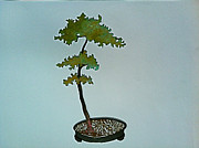 Bonsai Sculpture Posters - Moyogi Copper Bonsai Poster by Vanessa Williams
