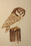 Woodburn Pyrography Framed Prints - Mr. Owl Framed Print by Bill Fugerer