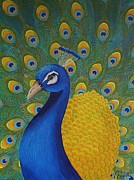 Valerie Chiasson-Carpenter - Mr Peacock