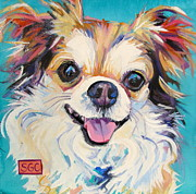 Chihuahua Framed Prints - Mr. Tibbs Framed Print by Sarah Gayle Carter