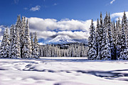 Wendy White Acrylic Prints - Mt. Adams Acrylic Print by Wendy White