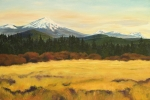 Sunriver Paintings - Mt. Bachelor by Donna Drake