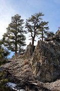 High Desert Photos - Mt Charelston by Balanced Art