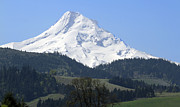 Mt Hood Prints - Mt Hood Print by Elvira Butler
