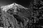 Tim Moore - Mt Jefferson Black and...
