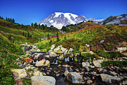 Shawn Everhart - Mt. Rainier and Creek