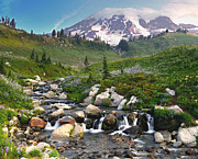 Mt Rainier Stream Framed Prints - Mt. Rainier at Edith Creek Framed Print by Jim Chamberlain