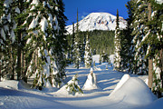 Mt Rainier National Park Prints - Mt Rainier at Reflection Lakes in Winter Print by Inge Johnsson