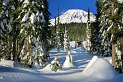 Inge Johnsson - Mt Rainier at Reflection Lakes in Winter