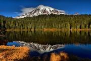 Adam Jewell - Mt Rainier Reflections