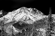 Snow Prints - Mt. Rainier VII Print by David Patterson