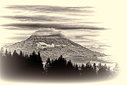 Ron Roberts Photography Posters - Mt. Rainier WA in Black and White Poster by Ron Roberts