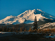 Skiing Art Cards Prints - Mt. Shasta Print by Wendy McKennon