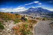 Spencer McDonald - Mt. St. Helens II