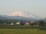 Robert Walker - Mt St Helens