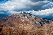Gary Whitton - Mt. Timpanogos from...