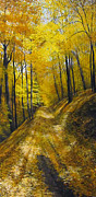 David Bottini - Muddy Autumn Trail
