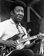 Muddy Prints - Muddy Waters Poster Print by Sanely Great